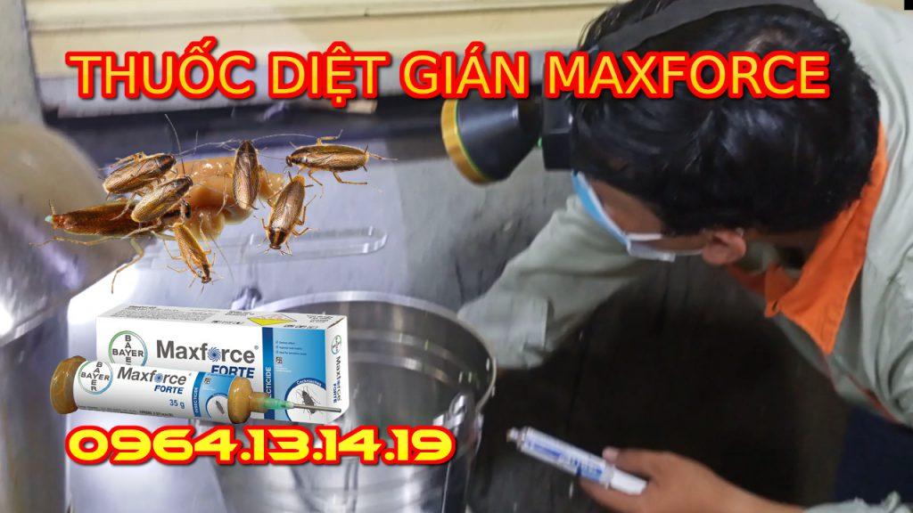 thuốc diệt gián đức maxforce