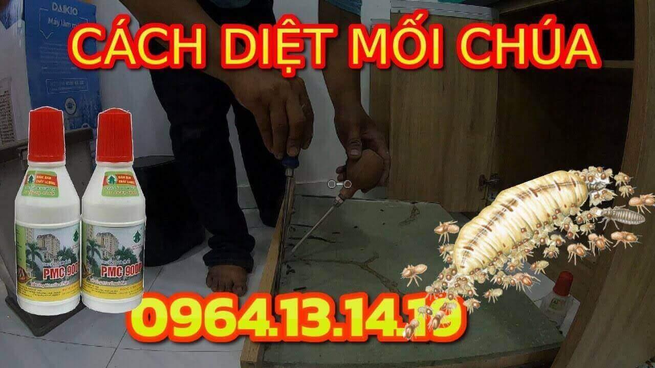 CACH DIET MOI CHUA