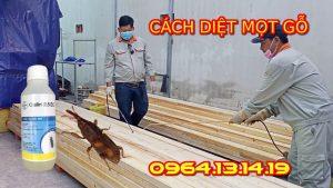 thuốc ngâm gỗ chống mối mọt