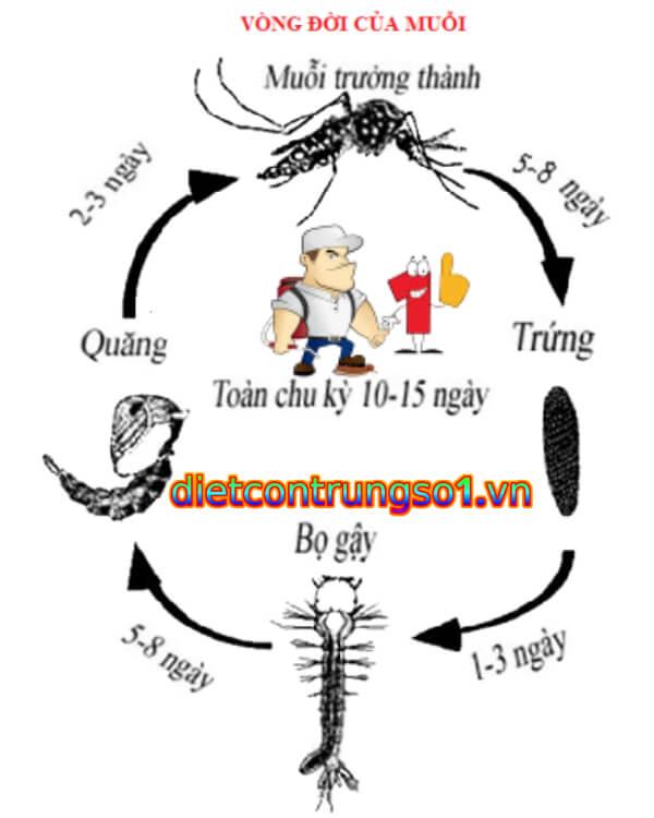 mua thuốc diệt muỗi