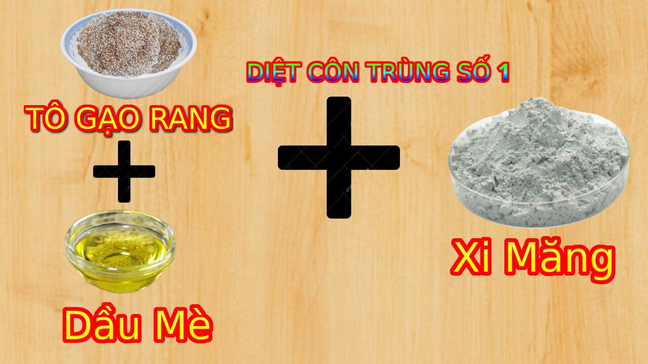 To Gao Rang Tron Deu Voi Dau Me Roi Tiep Tuc Tron Xi Mang Kho